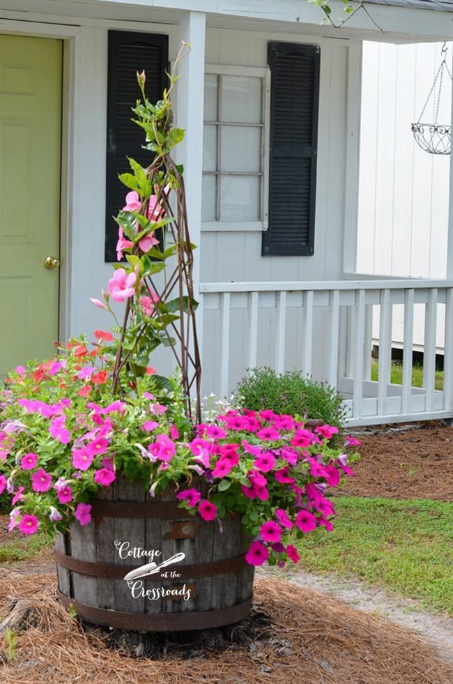 flowers in a barrel | Cottage at the Crossroads