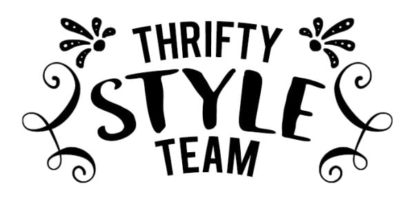 Thrifty Style Team-a group of bloggers bringing you their best, inexpensive ideas