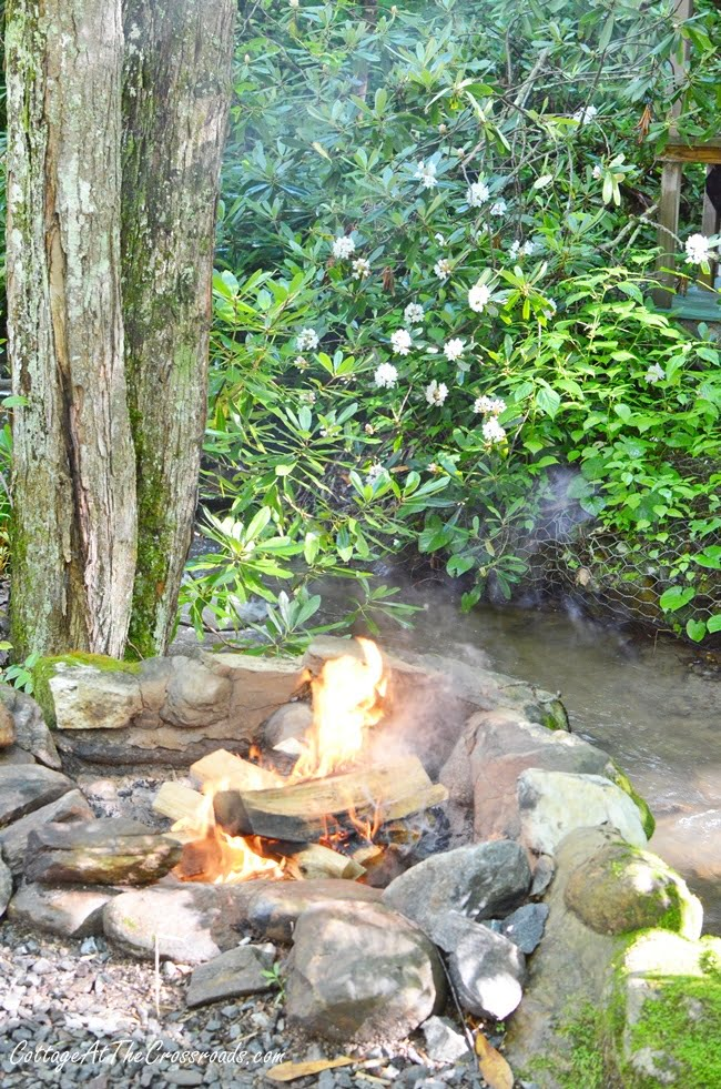 fire ring at Moonshine Creek Campground