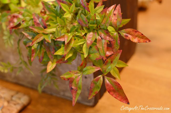 nandina used on a fall farmhouse tablescape