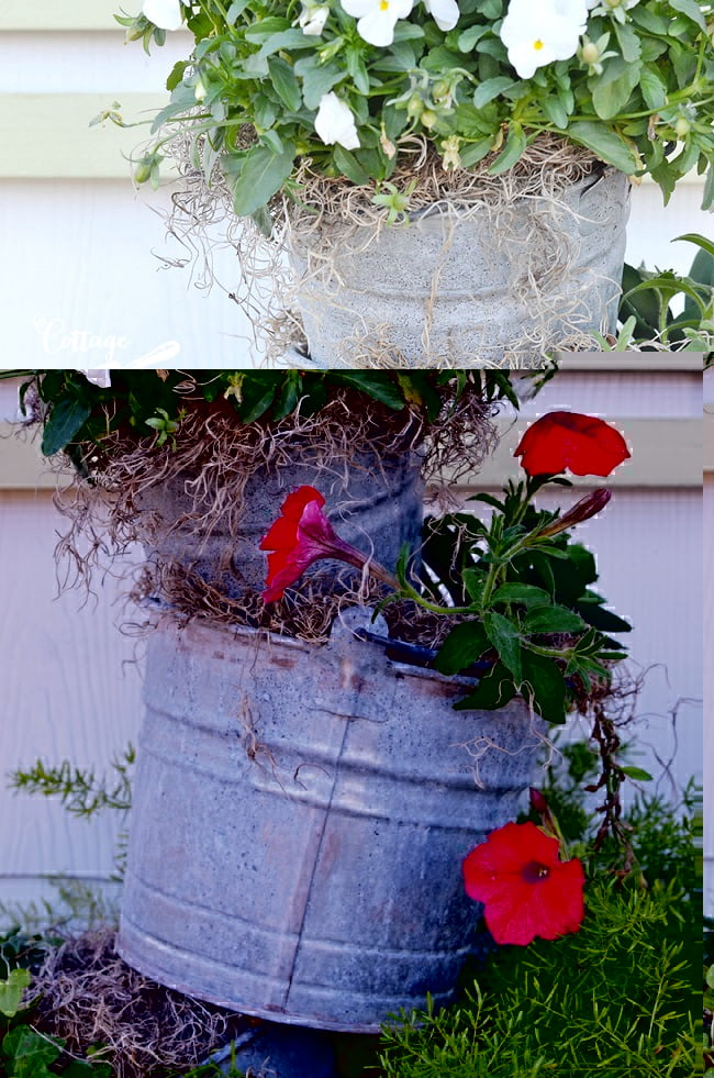 topsy turvy galvanized bucket planter