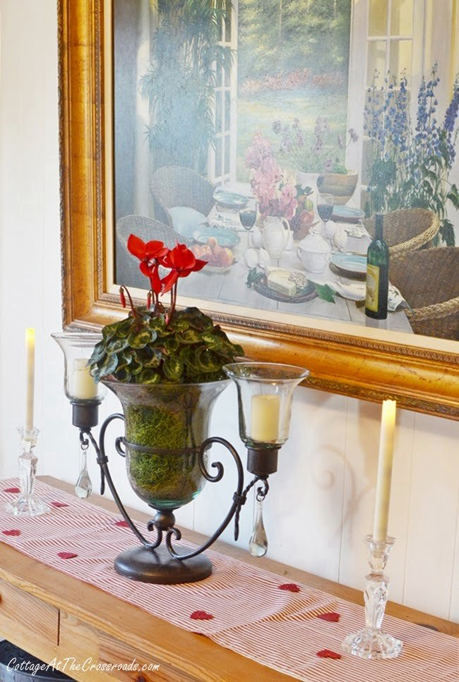 red cyclamen on the sideboard
