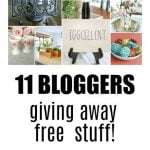 Pinecone Flower Giveaway and More