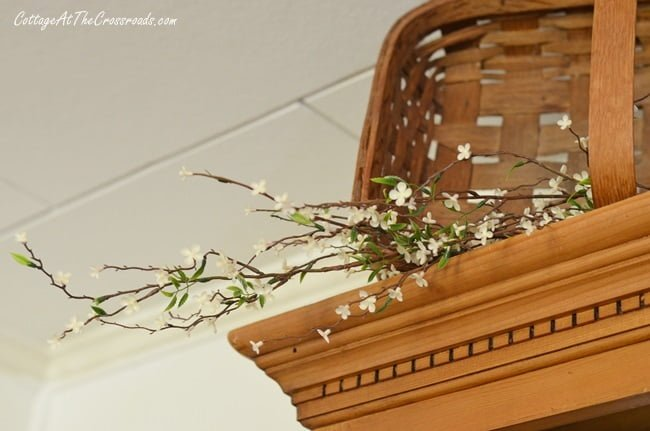 spring blossoms on top of a pine cupboard on a spring tour