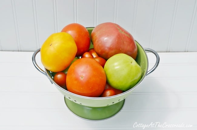 a variety of tomatoes in a colander