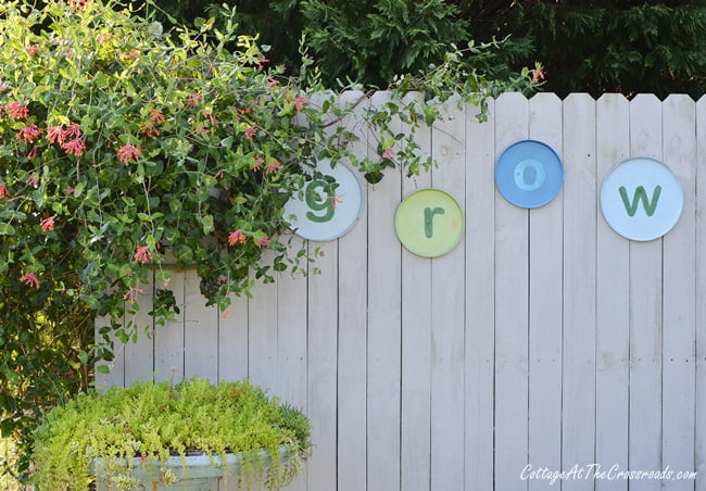 thrifty grow sign in the garden