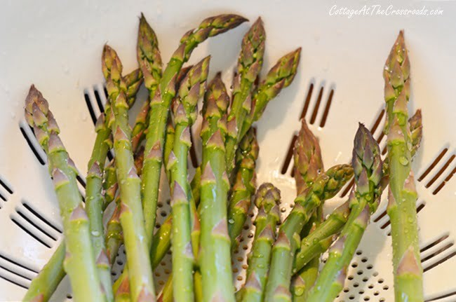 washed fresh asparagus