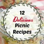 Graphic with the text 12 Delicious Picnic Recipes