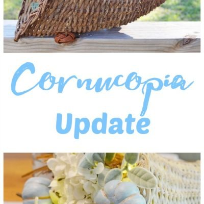 Updated Cornucopia and other Thrifty Ideas