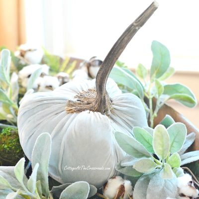 blue velvet pumpkin in an antique dough bowl