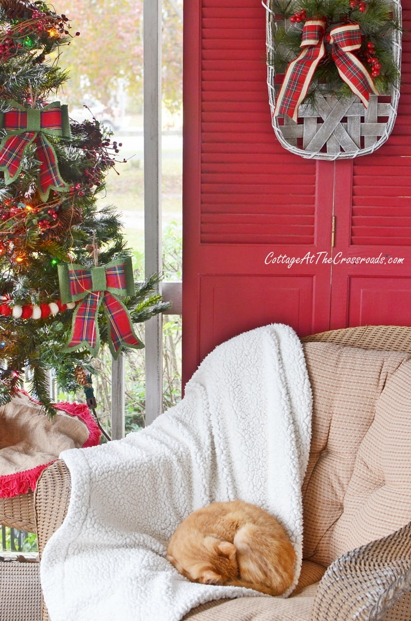 cat curled up in a chair on a Christmas front porch