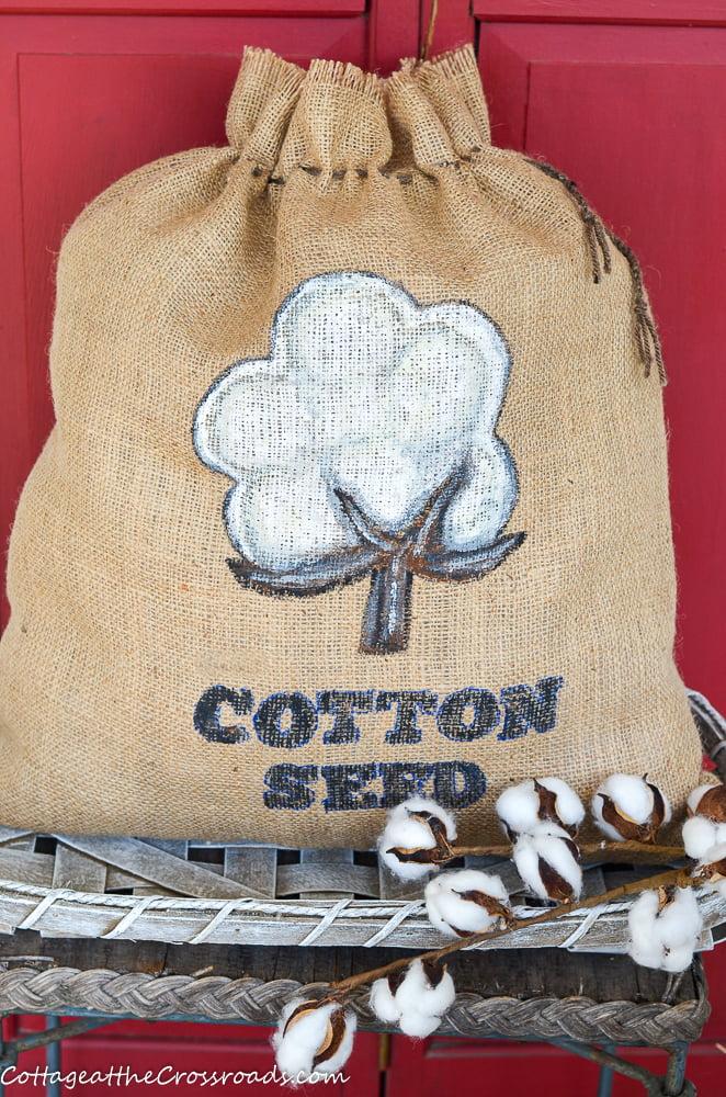 DIY Cotton Seed Bag