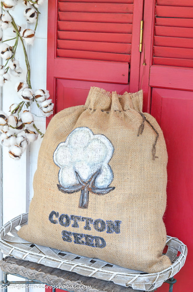 DIY Cotton Seed Bag