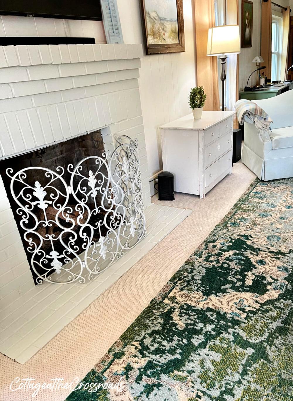 rug on top of Petproof carpet