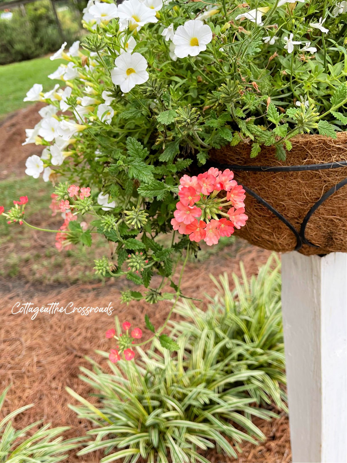 flower basket mounted on a wooden post
