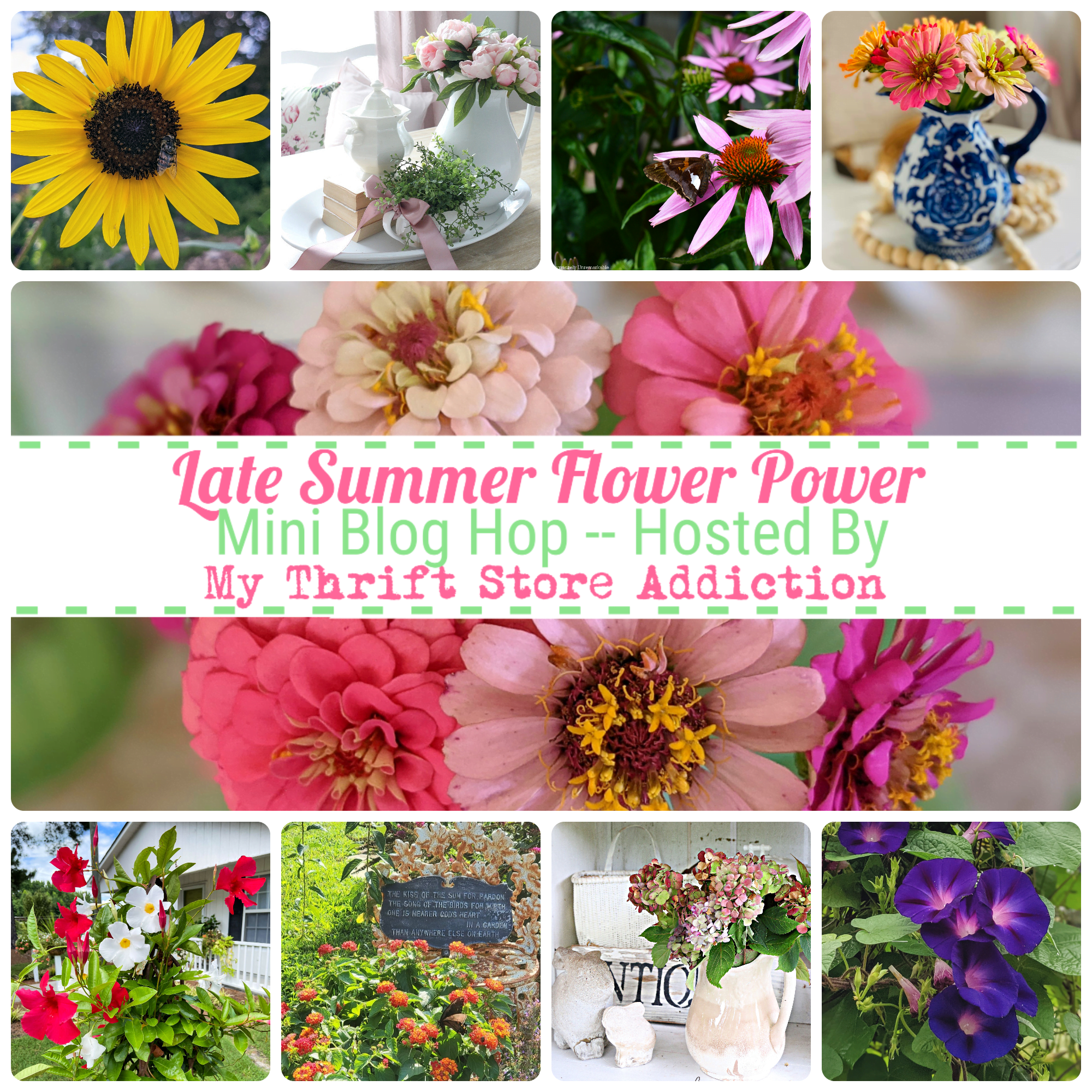 Late Summer Flower Power graphic