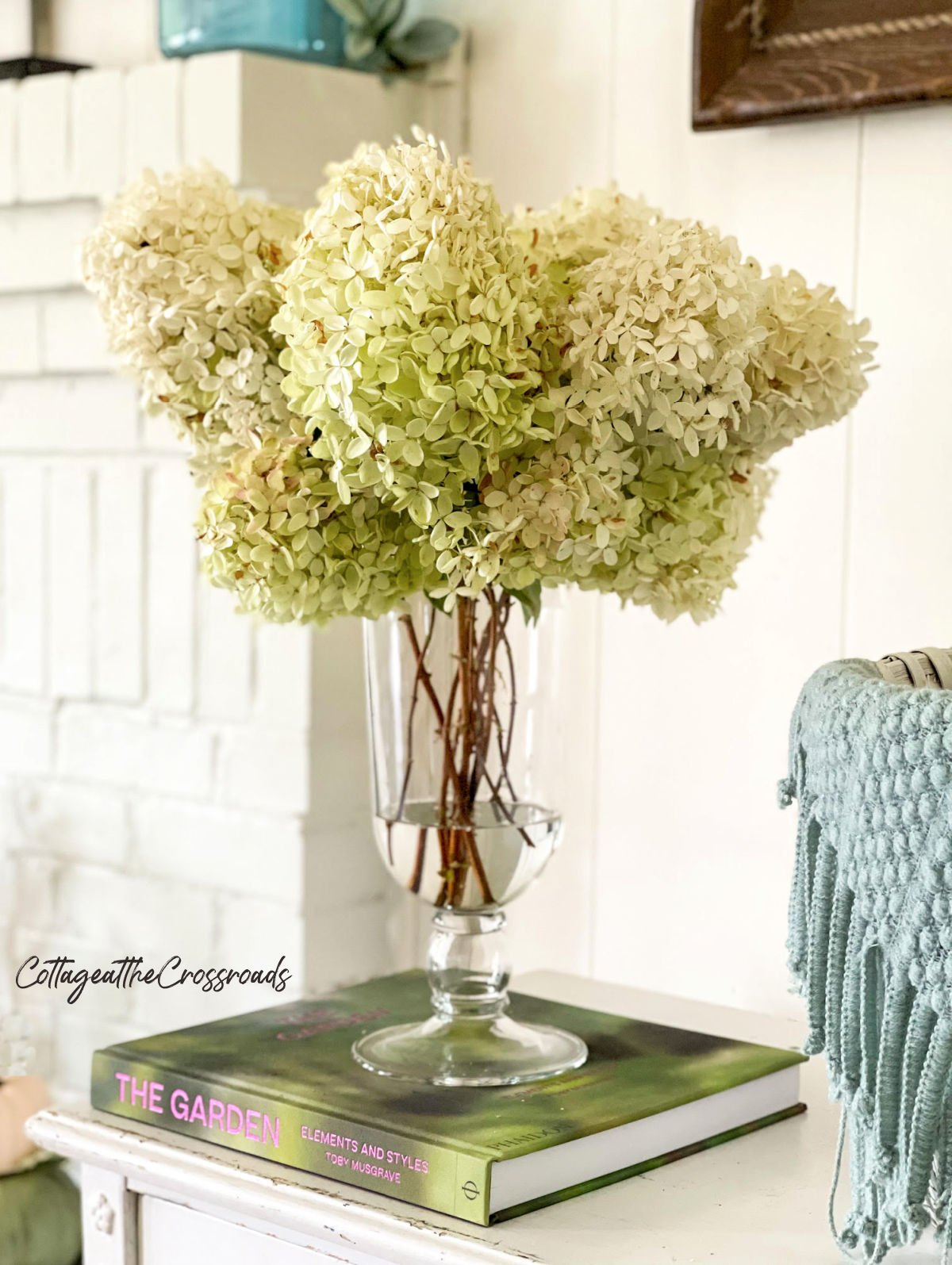 limelight hydrangea blooms in a vase