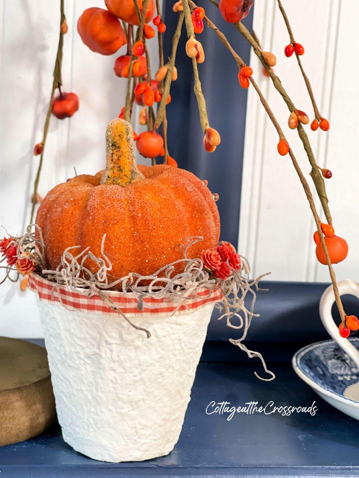 orange pumpkin in a peat pot holder