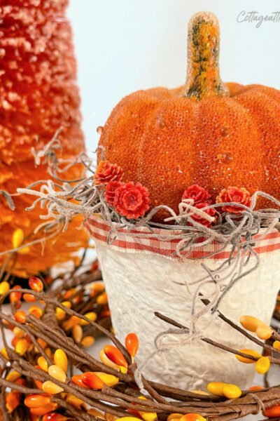 orange pumpkin on top of a painted peat pot surrounded with pipberry